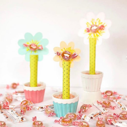 Flower craft with Caramel Creams